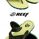 REEF-1310-WALLS-13IVDG_L (1)